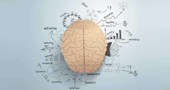 بازاریابی عصبی شرکت بازاریابی ویستابناسیس